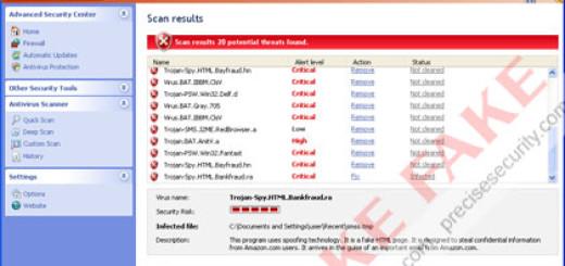 Smart Internet Protection 2011