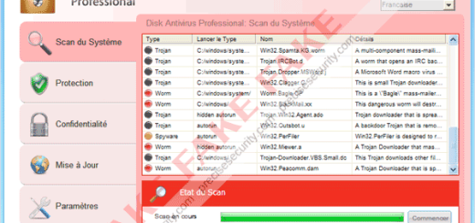 Disk-Antivirus-Professional-Malware
