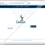 Remove gnoosi.net on home page