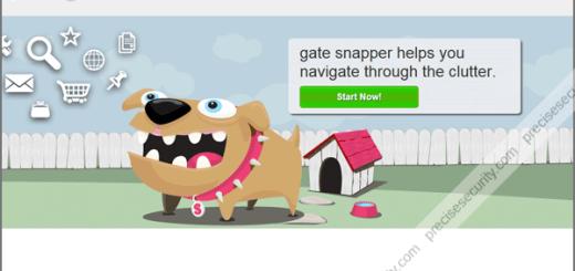 gate-snapper